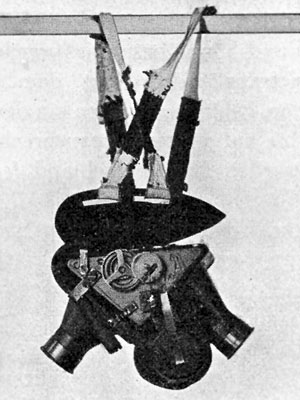 Julius Neubronner's patented Pigeon camera with two lenses, with cuirass and harness