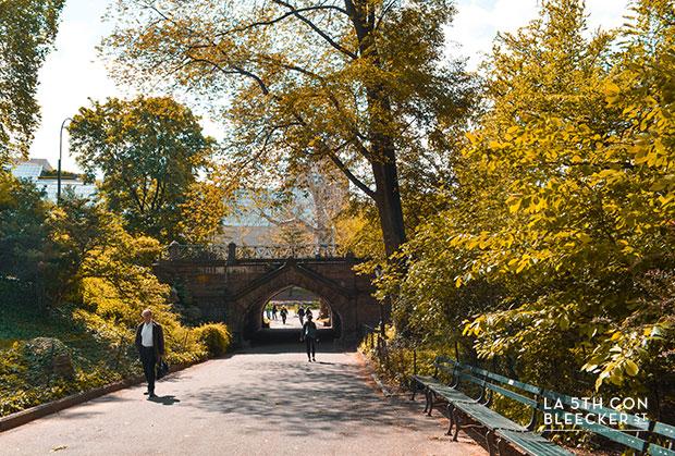 Guia de Central Park cine