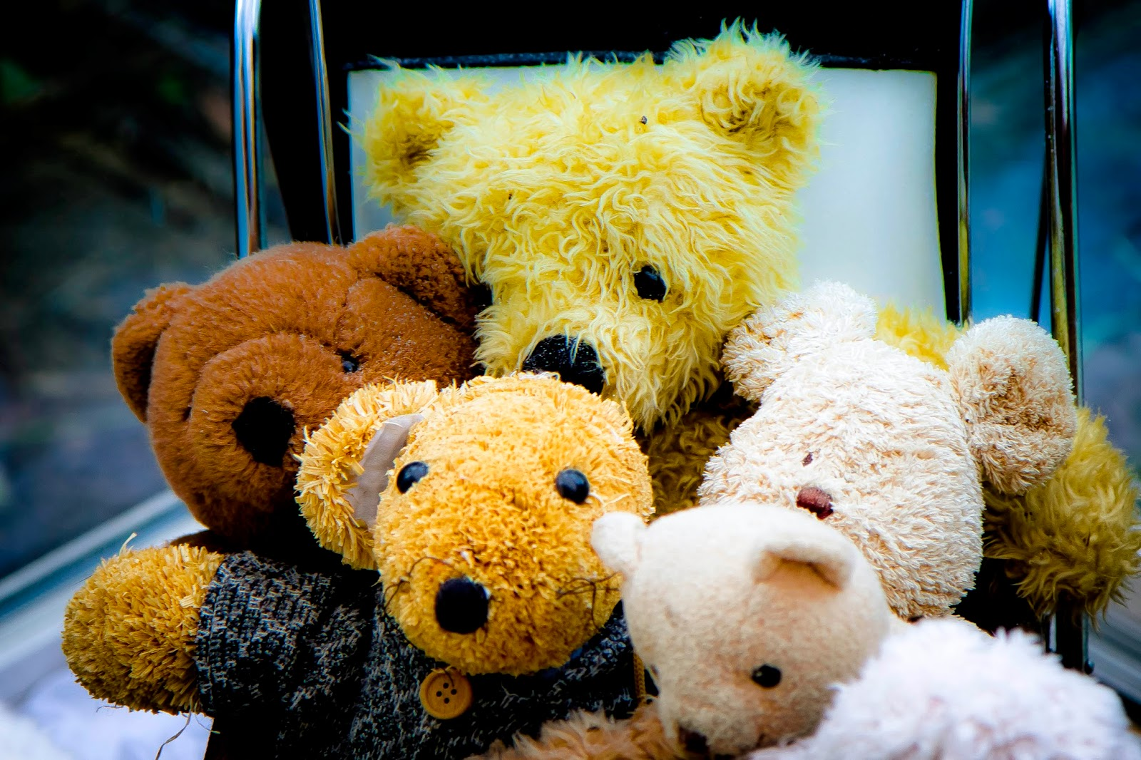 cute-teddy-bear-family-picture-wallpaper-photo-image-3680x2453.jpg