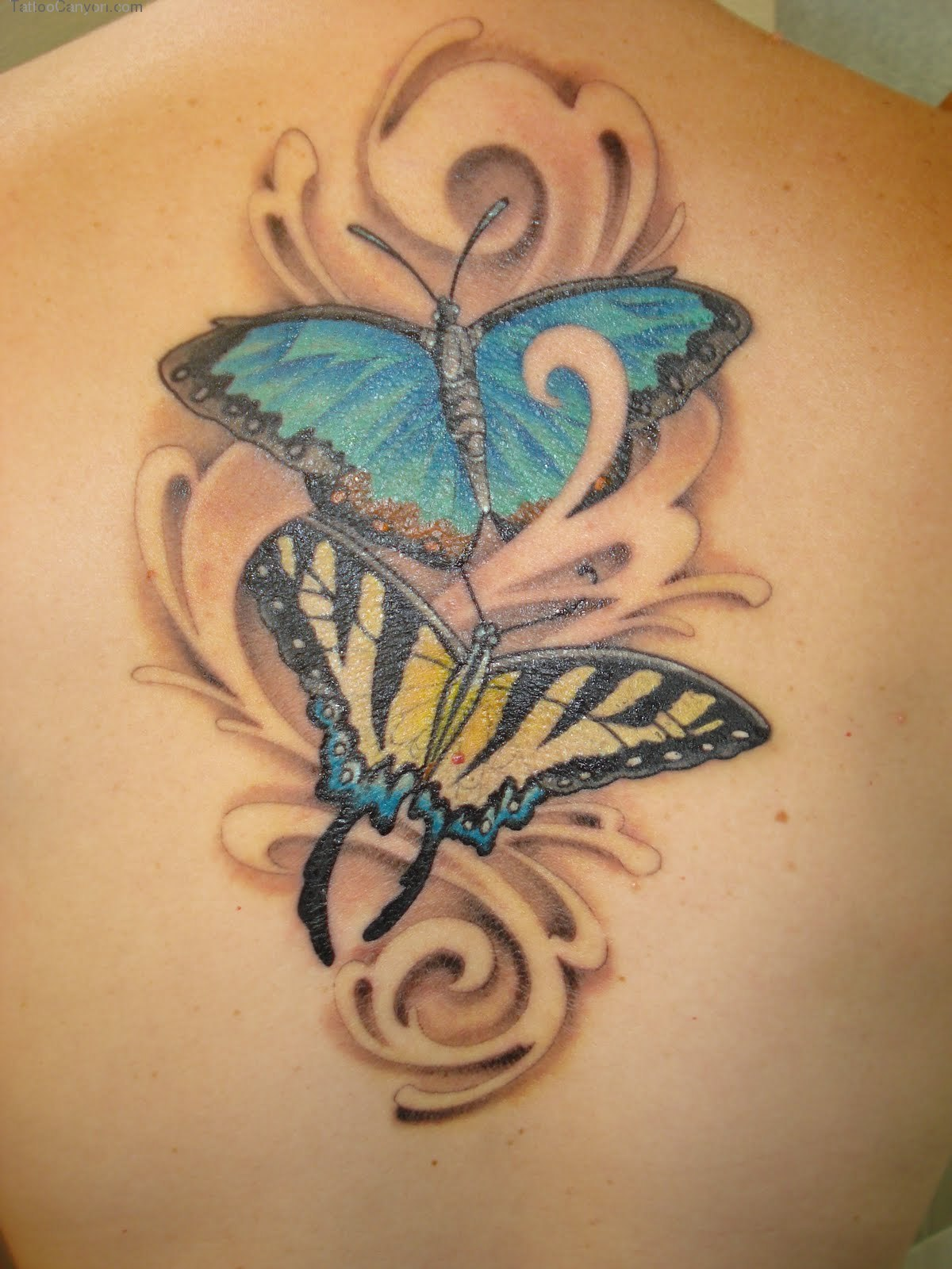 Butterfly Tattoo Design and Meaning Tattoo Yakuza Japanese