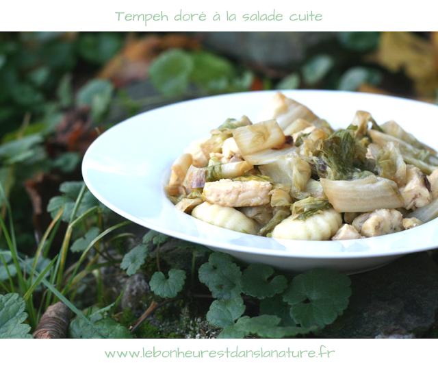 recette tempeh doré à la salade cuite gnocchis vegan végétal sans gluten sain healthy