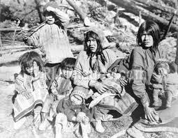 Tribo Ahtna-3