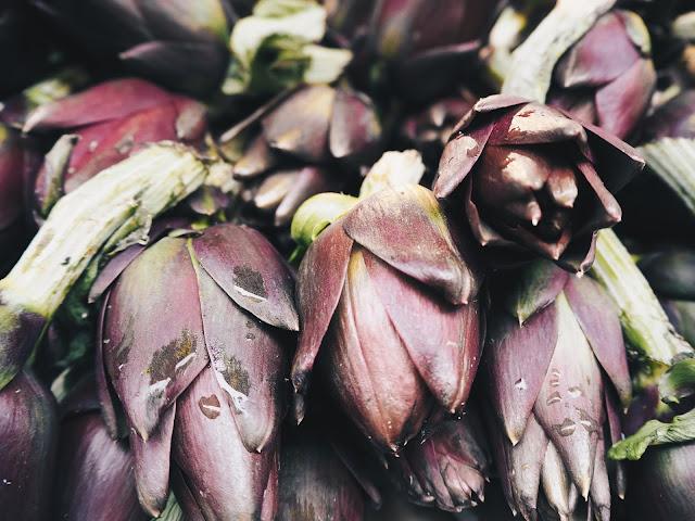 artichaud violet italien