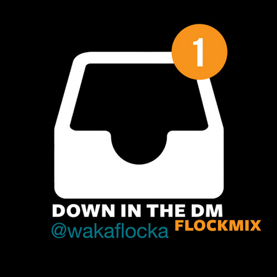 Waka Flocka Flame - Down In The DM (Remix)