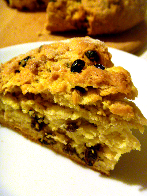 Spotted Dog is a variation on an Irish Soda Bread.  It's slightly sweet and perfect for St. Patrick's Day - Slice of Southern