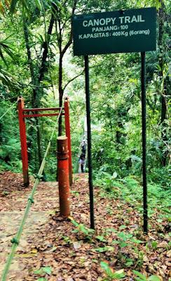 Hutan yang memiliki Canopy Trail Pertama