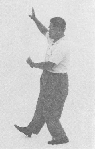 Tai Chi Chuan (Square Form) 32. Swing Fist