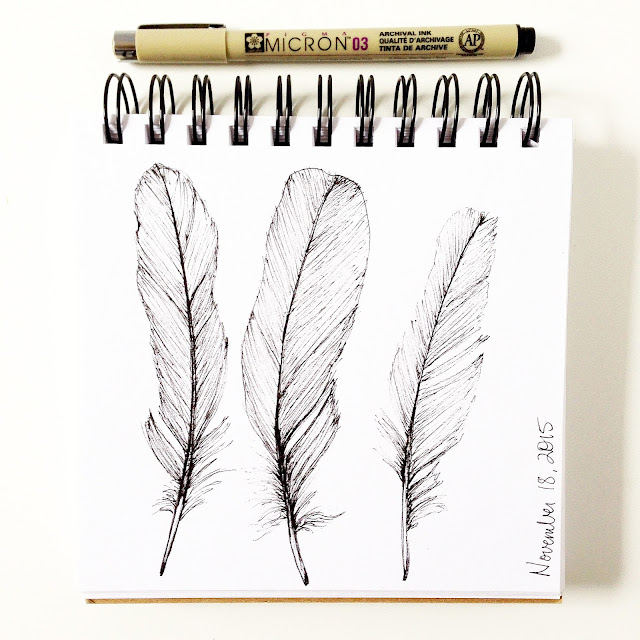 daily sketchbook, sketchbook, feathers, micron pen, pen drawing, Anne Butera, My Giant Strawberry