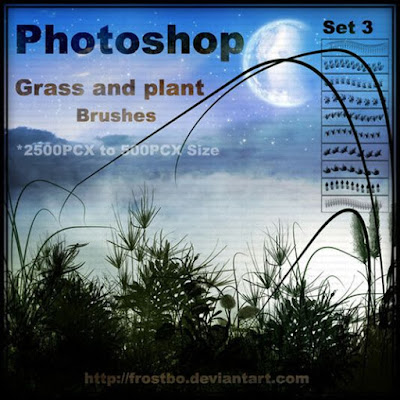 فرش  نباتات و حشائش