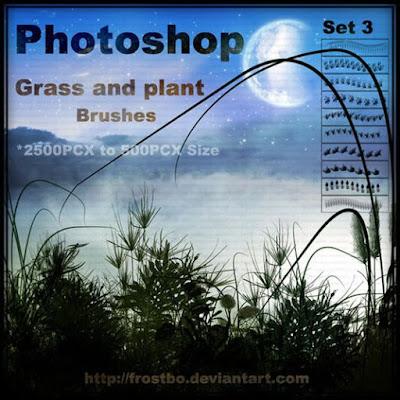 فرش التصميم انواعها واشكالها وابدااعااتها ... Photoshop 0fb9a034d0c342789830a36efdc5e0e9-650-80
