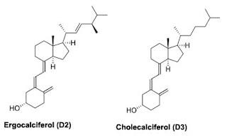 Fungsi Vitamin D Dan Peranan Bagi Tubuh