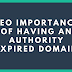 SEO Importance of having an Authority Expired Domain