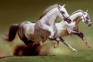 2-white-running-horse