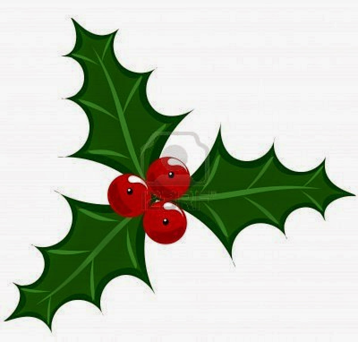 pictures  jokes  and other stuff christmas symbols free holly clipart images free clipart holly leaves