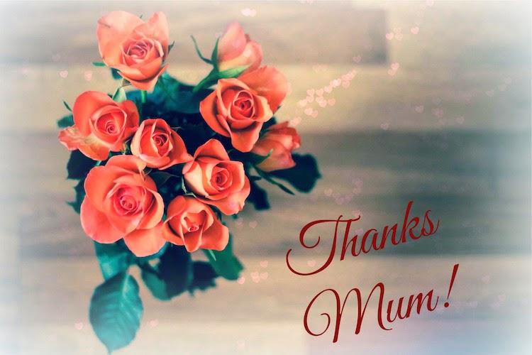 Morgan's Milieu | My Mum: Roses and Thank you.