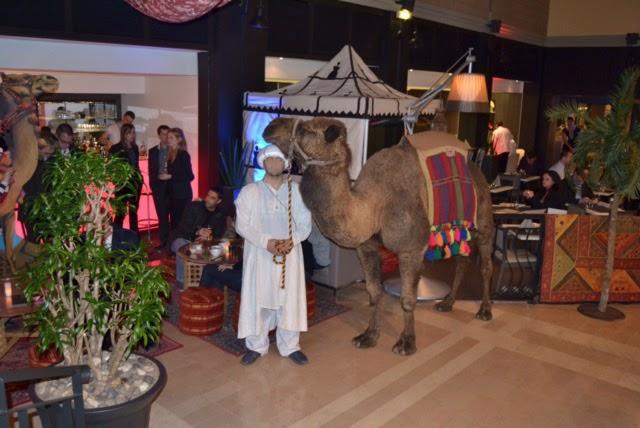 la location chameaux par camels ride marrakech pour les mariages cest la scurit davoir un animal habitu la prsence dinvits calme - Location De Chameau Pour Mariage