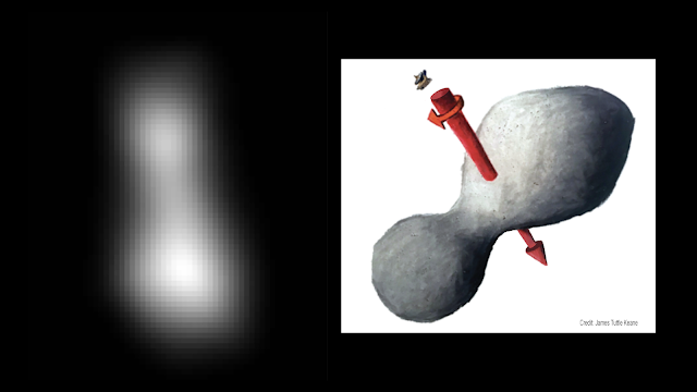 At left is a composite of two images taken by New Horizons' high-resolution Long-Range Reconnaissance Imager (LORRI), which provides the best indication of Ultima Thule's size and shape so far. Preliminary measurements of this Kuiper Belt object suggest it is approximately 20 miles long by 10 miles wide (32 kilometers by 16 kilometers). An artist's impression at right illustrates one possible appearance of Ultima Thule, based on the actual image at left. The direction of Ultima's spin axis is indicated by the arrows.  Credits: NASA/JHUAPL/SwRI; sketch courtesy of James Tuttle Keane