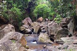 Pesona Air Terjun Tedunan Pati, dari Wisata hingga Tempat Bertapa