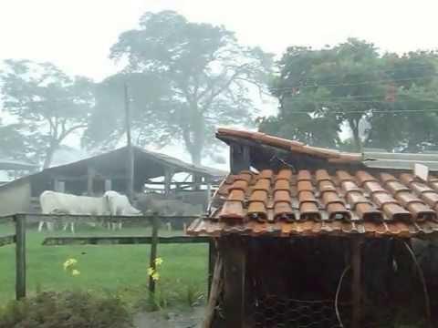 ceara-registra-chuva-em-mais-de-100-municipios