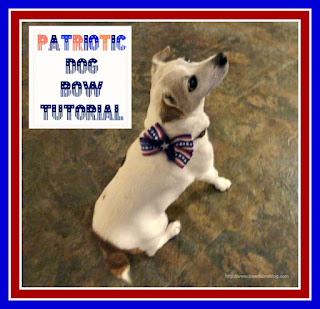 Patriotic dog bow with feathers
