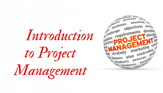 Principle of project management