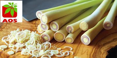 Lemongrass Essential Oils India