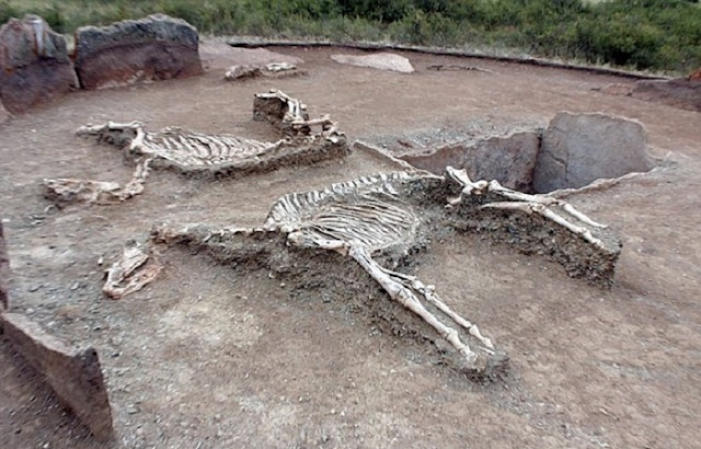 5,000-year-old grave with 'Romeo and Juliet couple' discovered in Kazakhstan