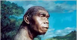Jenis Jenis Manusia Purba Di Indonesia Dengan Ciri Ciri Penemu Dan Tempat Penemuannya Habibullah Al Faruq