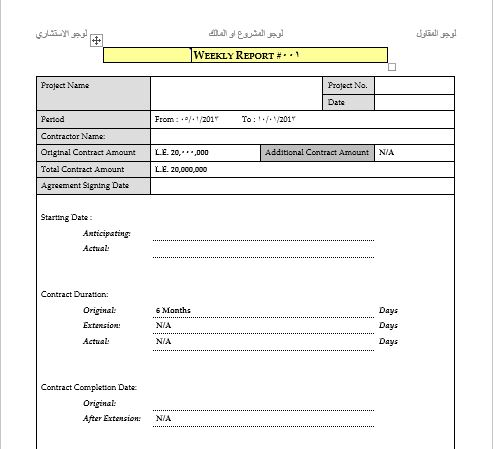 Weekly Report Template doc - ENGINEERING MANAGEMENT - employee weekly report