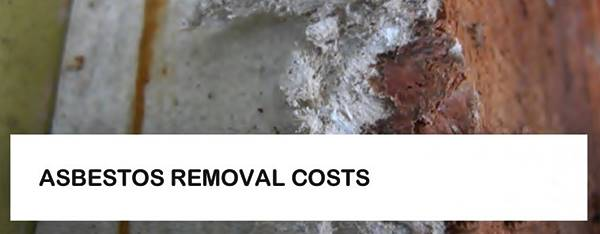 Asbestos Removal Costs Residents