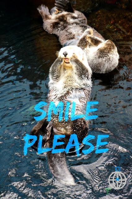 wydry lisboa1