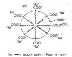 संघटित कोलॉइड