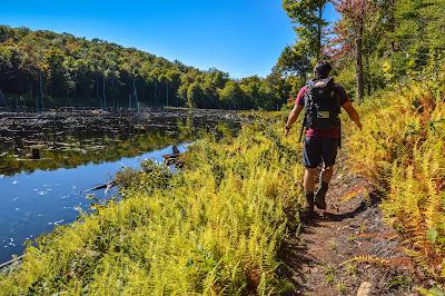 trail around mud pond