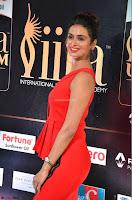 Meenakshi Dixit in Red One Shoulder Red Zipped up gown at IIFA Utsavam Award 06.JPG