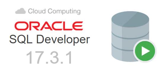 Torrent oracle sql developer
