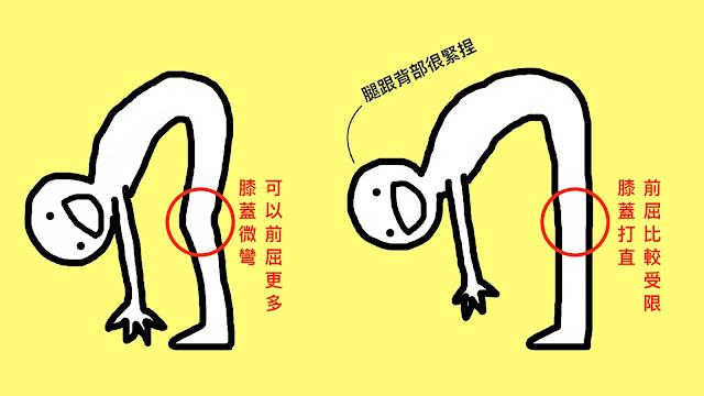 好痛痛 解剖列車 柔軟度差 膝蓋打直 膝蓋彎曲 筋膜 淺背線 核心肌群