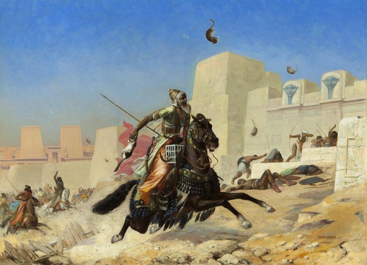 قصة حرب: القطط تهزم المصريين
