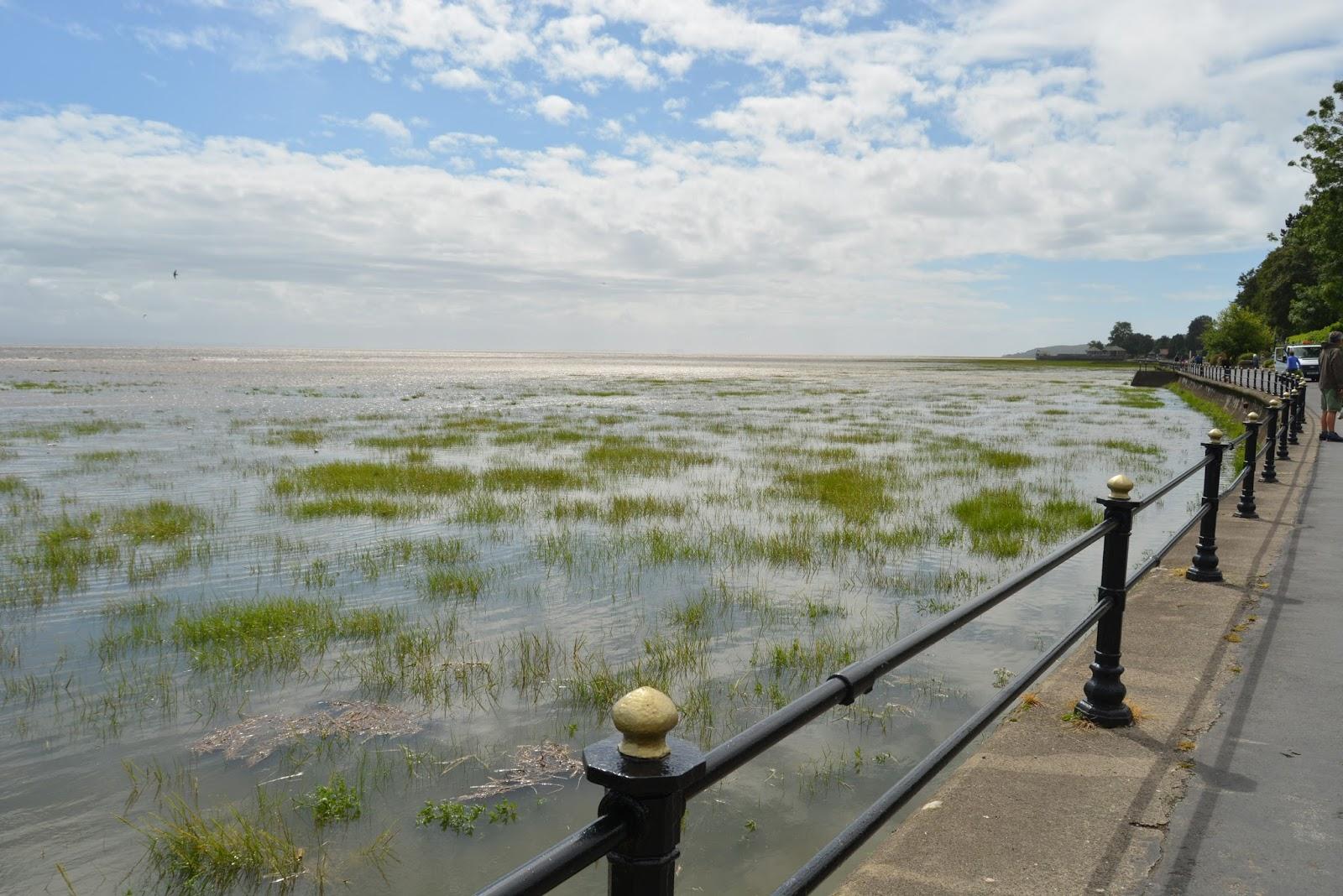 promenade, coast, beach, holiday, north, grass, nature, grange-over-sands