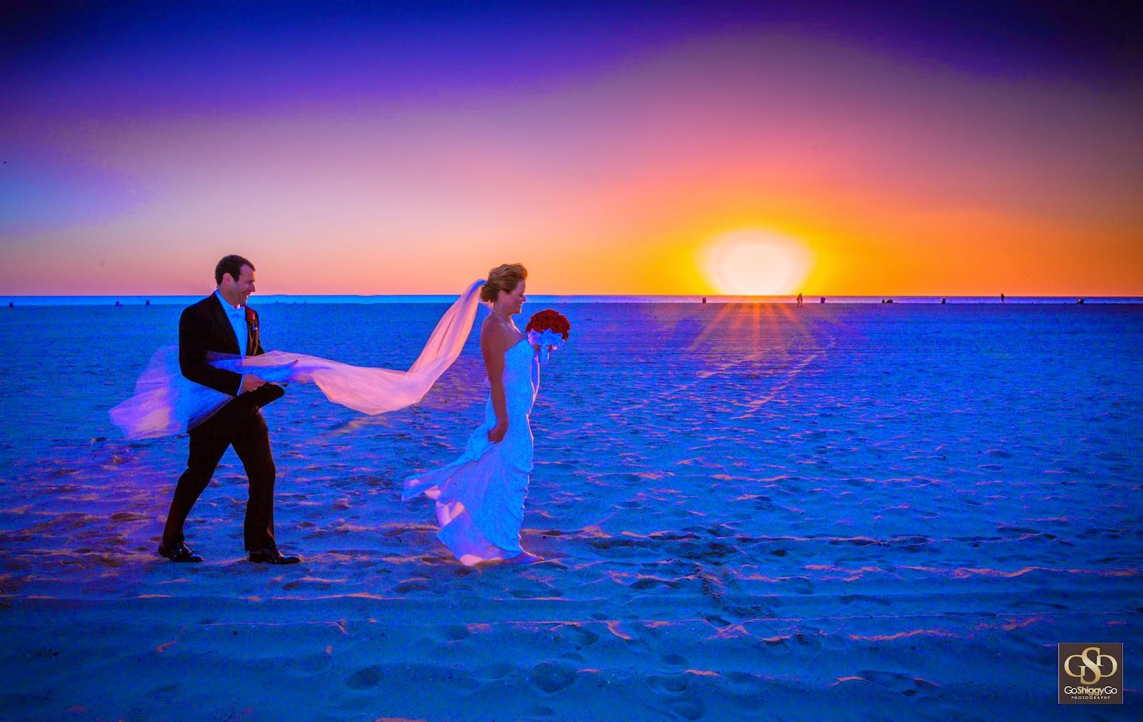 GoShiggyGo: Audra & Michael's New Year's Eve Wedding ...