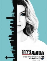 Grey's Anatomy 13 | Bmovies