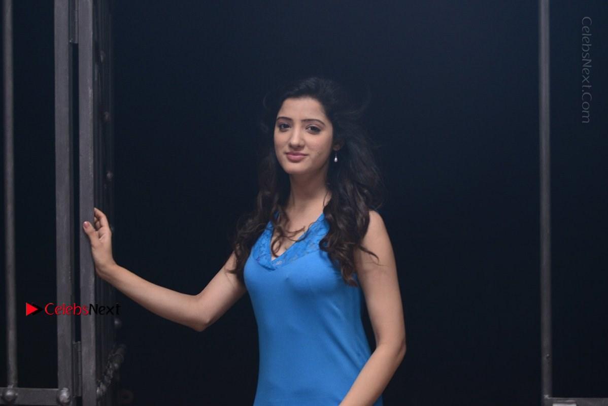 Richa Panai Spicy Pics in Blue Nighty from Rakshaka Bhatudu Telugu Movie