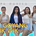 Lirik Lagu Goyang Wik Wik - Lifa Nabila