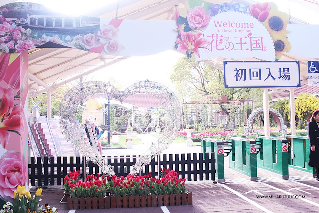 3 Best Flower Fields to Visit in Spring