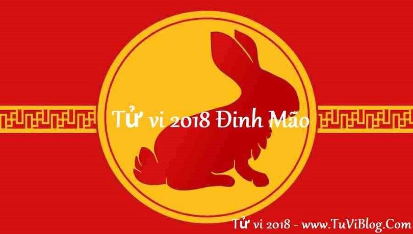 Tu vi tuoi Dinh Mao 1987 nam 2018