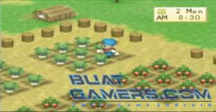 Download Harvest Moon Boy And Girl PSP ISO CSO High Compress