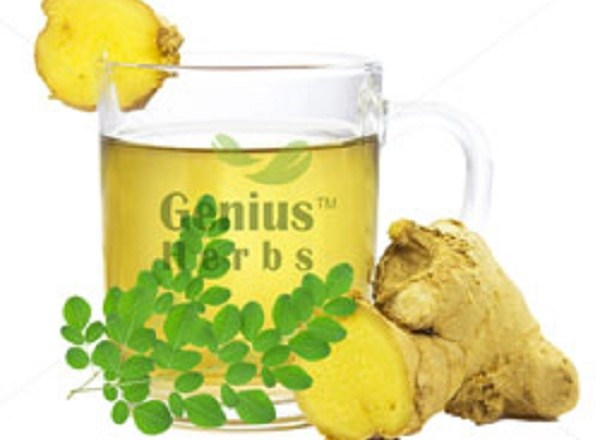 Ginger And Moringa: The Miraculous Combination That Fights The Deadliest Diseases Of The 21st Century!