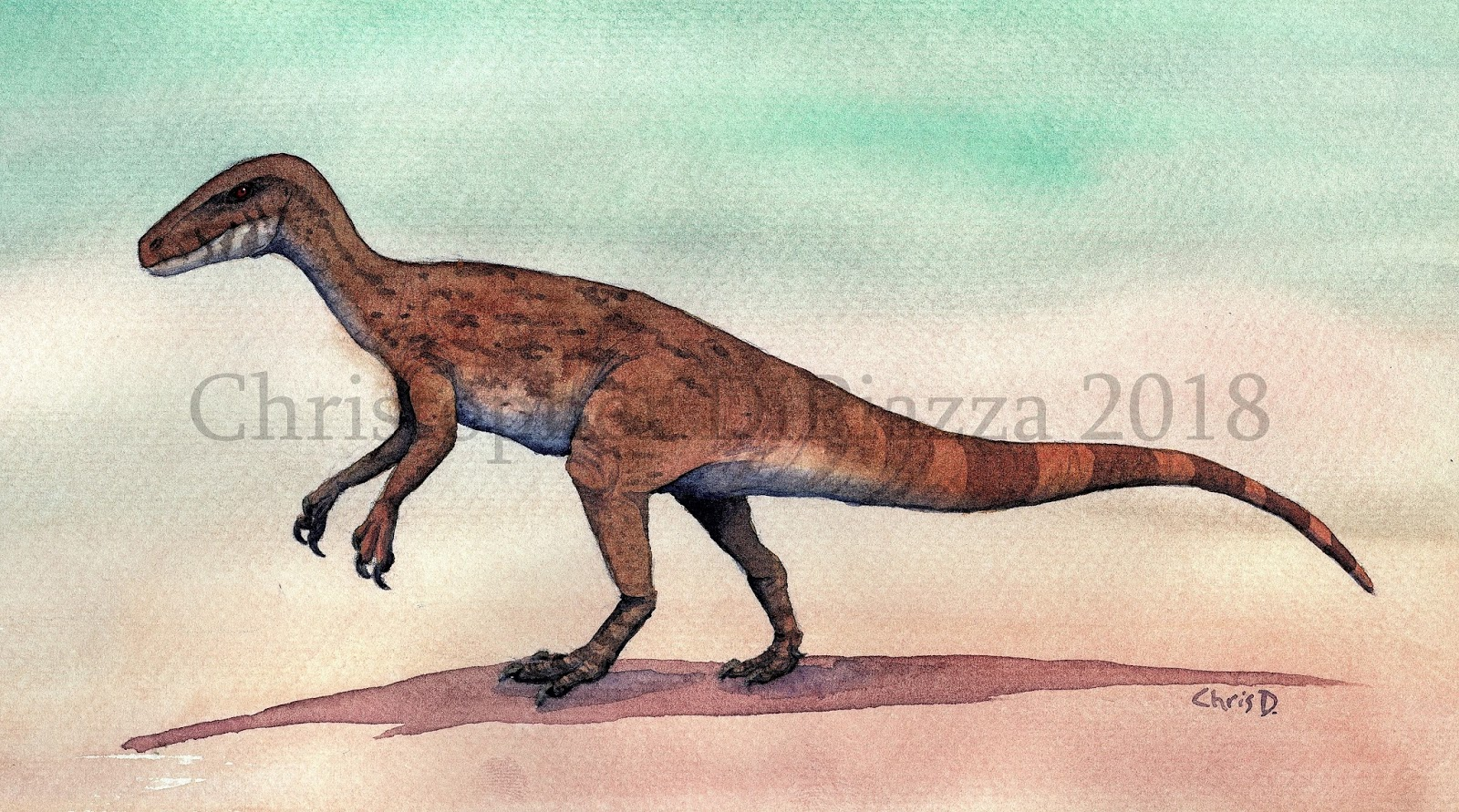 Prehistoric Beast Of The Week Herrerasaurus Beast Of The Week