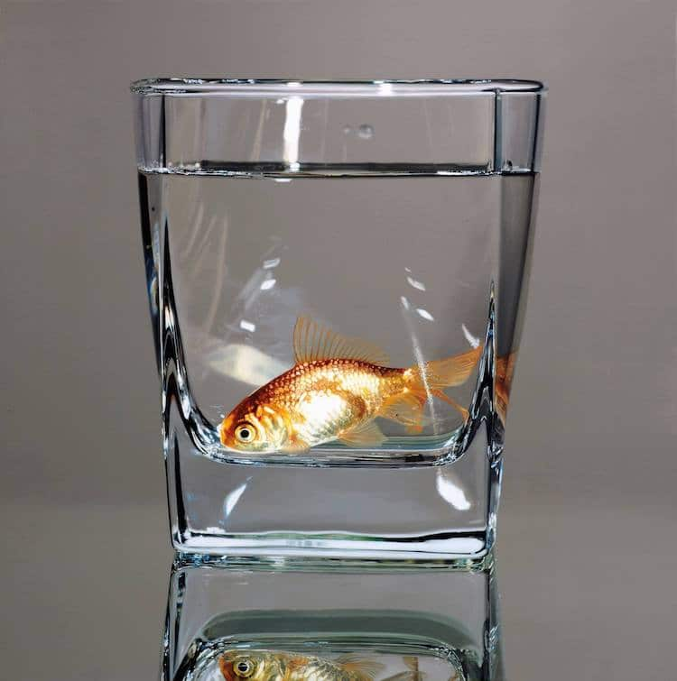 Stunning Oil Paintings Of Fish In Glass Bowls Are Examples Of Symbolism For The Contemporary World