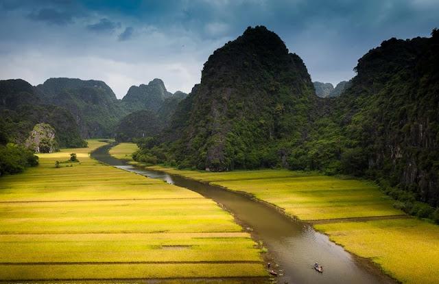 Stunning fields in Northern Vietnam 4