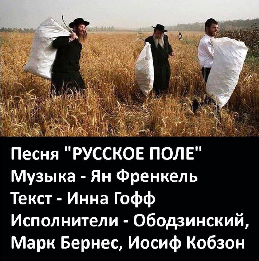 классное картинка русское поле евреи клавиши буду